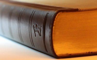 Quel statut juridique pour le coach de vie ?